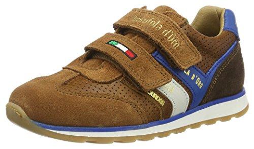 Pantofola D'Oro Jungen Canino Ragazzi Velcro Low Top, Braun (Tortoise Shell), 34 EU (Velcro Schuh Braun Casual)