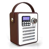 داب/ داب+ راديو الرقمي، مكبرات صوت بلوتوث لاسلكية من Phomnd DAB/DAB+ مشغل MP3 لاسلكي بمشغل MP3 AUX IN TF U القرص للقراءة راديو اف ام مع مقبض متنقل إعداد ساعة منبه