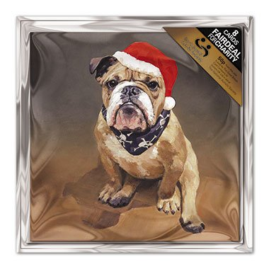 charity-christmas-cards-in-aid-of-the-national-autistic-society-christmas-cheer-bulldog-in-hat-pack-