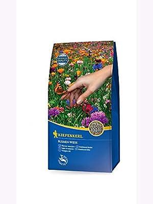 Rasensamen - Blumen-Wiese 1 kg von Kiepenkerl von Kiepenkerl Rasensamen - Du und dein Garten