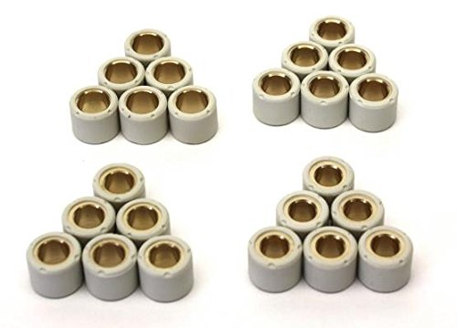 Variomatik Gewichte Abstimmset Variorollen 16x13mm Vorteilspack 6,2gr, 7,5gr, 8,5gr, 9,5gr