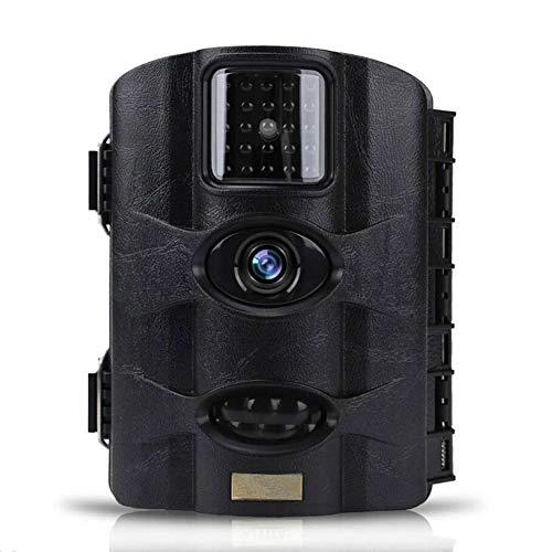 MTTLS Wildkamera Fotofalle Jagdkamera 16MP 1080 P HD 0,6 Zweite Auslösezeit IP 65 Wasserdichte Design Nachtsicht PIR Sensor Jagd Kamera Wildkamera Premium Bewegungsmelder Fotofalle,Black