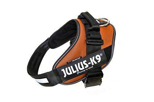 Julius-K9 IDC-Power Harnais pour Chien Cuivre Taille 2