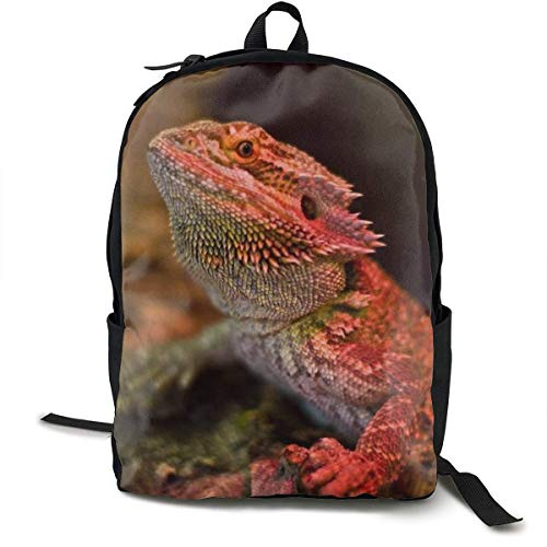 sghshsgh Rucksack für Hochschule,Gym Picnic Running Backpack Daypack Durable Polyester Multipurpose Anti-Theft Rucksack Large Capacity Casual College School Daypack Shoulder Bag, Cool Bearded Dragon -