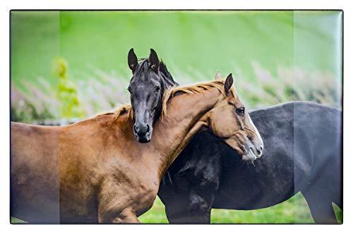 Idena 14018 - Schreibunterlage aus Kunststoff mit Zwei Einstecktaschen, Pferde, ca. 68 x 44 cm, Mehrfarbig
