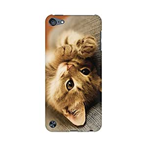 Mobicture Cute Kitten Premium Printed High Quality Polycarbonate Hard Back Case Cover for Apple iPod Touch 5 With Edge to Edge Printing