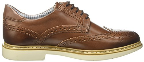 Docksteps Business, Scarpe Stringate Basse Derby Uomo Marrone