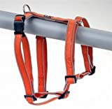Geschirr Sweet&Safe Vario Rapid Gr.L, 50-78 cm, orange, reflektierend