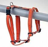 Geschirr Sweet&Safe Vario Rapid Gr.L, 50-78 cm, orange, reflektierend