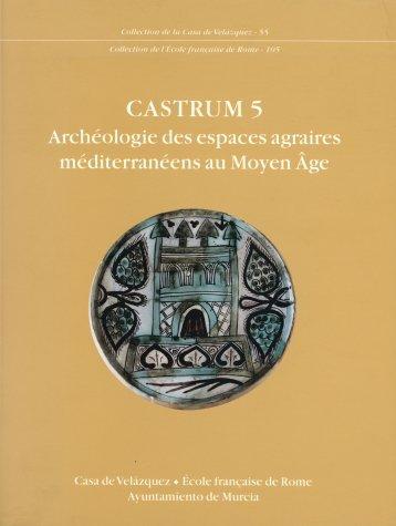 Castrum 5: Archéologie des espaces agraires méditerranéens au Moyen Âge (Collection de la Casa de Velázquez)