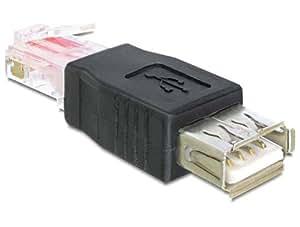 Delock Adaptateur USB vers RJ45