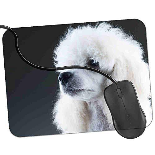 Gaming Mauspad Elegantes weißes Pudel-Portrait Fransenfreie Ränder spezielle Oberfläche verbessert Geschwindigkeit und Präzision rutschfest 2K691 -