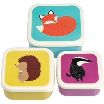Rex International Animals u2013 Set of Three Boxes for Lunch.  sc 1 st  Amazon UK & Gruffalo Set of 4 Feasting Snack boxes by Wild u0026 Wolf: Amazon.co ... Aboutintivar.Com