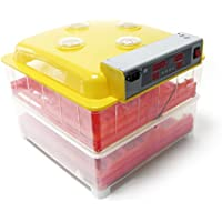 Incubadora automática 72 huevos Nacedora Criadero Control Temperatura Incubación Aves