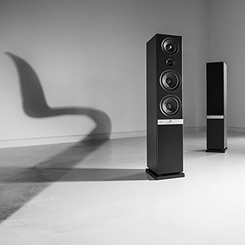 Teufel Raumfeld Stereo L High End-Streaming-Standlautsprecher -
