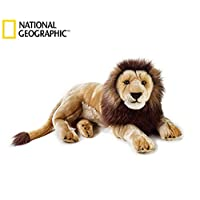 National Geographics 8004332707509 Lelly Leone Grande (Ngs), Brown Colour, Natural
