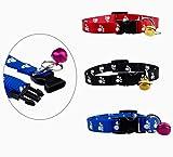 Pfotenhalsband für Hund & Katze 20 - 31 cm mit Glöckchen in 3 Farben (schwarz, blau & rot) - Katzenhalsband - Hundehalsband (rot)
