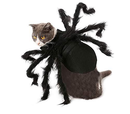 Katzen Spider Kostüm Für - QYHSS Haustier Hunde und Katzen Halloween Kostüme, Spider Wing Verkleidungen Cosplay, Hund Katze Haustier Cosplay Kostüm Kleidung Fledermaus Kostüm Horn Kürbis Spinne Kappe