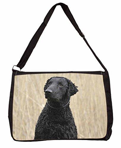 Curly Coat Retriever Dog Large 16
