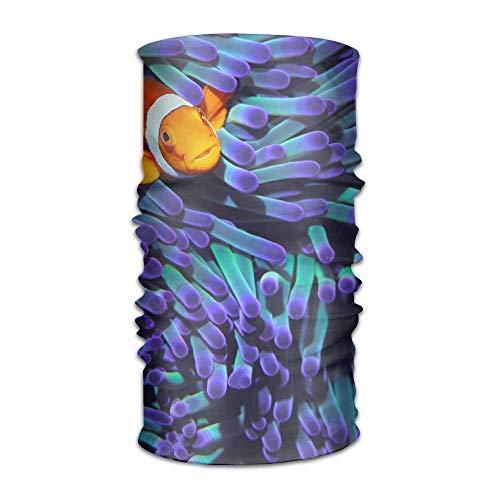 jiilwkie Great Clown Fish Fashionable Outdoor Hundred Change Headscarf Original Multifunctional Headwear | 06254239474932