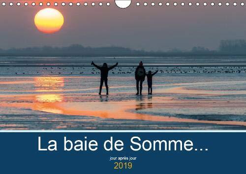 La baie de Somme... jour apres jour 2019: Immersion dans la nature de la Baie de Somme par Stephane Bouilland