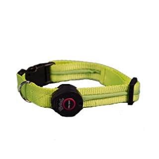 Aviditi BC208-S LED Lighted Dog Collar, Green with White LED Lights, Small