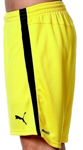 PUMA Fußball Shorts Herren 700258 dandelion-black ...