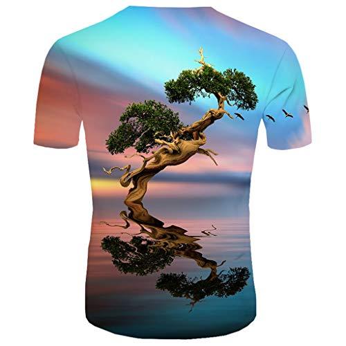 Realde Herren Oder Rundhals Kurzarm T-Shirt Oversize Farbe Loose 3D Tierdruck Oberteil Herbst und Winter Passt super auch zur Jeans Männer BequemTops Größe S-XXL (Jungen Farbige Jeans Größe 12)