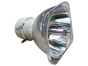 BENQ 5J.J6H05.001 - PHILIPS Lampe seule - BENQ MS500H, MS513P, MS513P+, MX303D, MX514P, TS513P