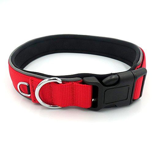 GOGO (Preis/Stück) Hundehalsband aus Nylon mit Verstellbar, Magic Aufkleber Reflektierendem Rand PVC für Nacht Sicher und sichtbar