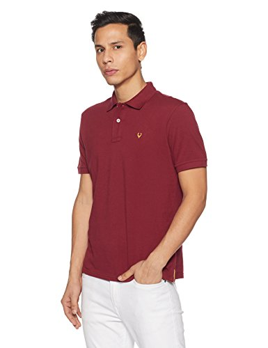 Allen Solly Men's Polo (8907587726946!_AMKP317G04235!_Maroon!_Large)