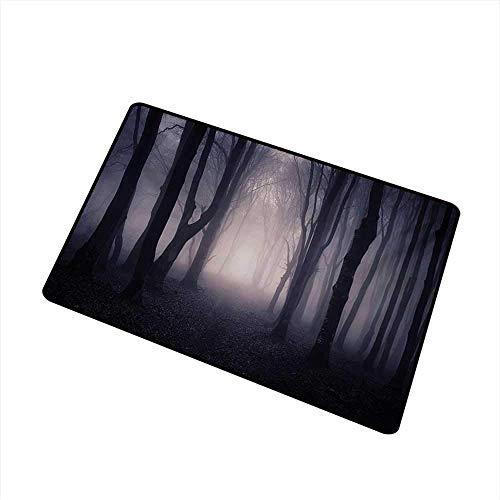 ercial Grade Eingangsmatte Weg durch die Dunkelheit Tief im Wald mit Nebel Halloween Creepy Twisted Branches Bild für Eingänge, Garagen, Terrassen, Pink Brown Bath Mat ()