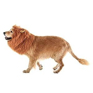 Airtana Costume pour chien Crinière de lion, confortable Fancy Lion Cheveux Chien ,Cosplay Vêtements Robe pour Halloween Noël de Pâques Festival fête d'a