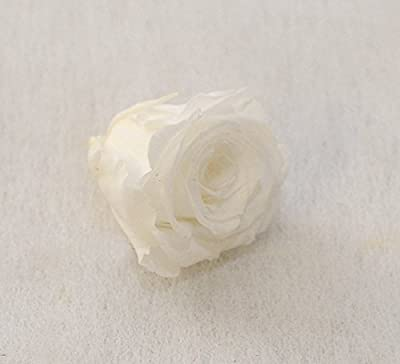 """1 Liebes-Geschenkset, eine echte konservierte Rose in rot, mindestens 3 Jahre ohne Wasser haltbar, dazu ein flauschig-weiches 16cm Herz mit der Aufschrift """"I LOVE YOU"""""""