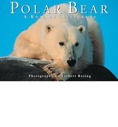 [(Polar Bear: A Book of Postcards)] [ Illustrated by Norbert Rosing ] [July, 2011]