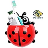 PRO365 Ladybird Insect Shaped Toothbrush Holder with Suction Cups and Double Tape - Random Color