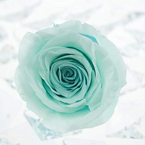 men erhalten Rose Head Box Geschenk Valentinstag Freundin Crafts Geschenke Exquisite Frischen Rosen DIY Tiffany Blue ()