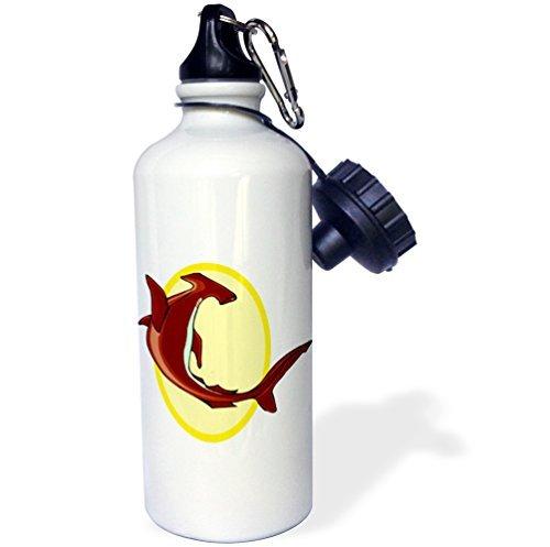 statuear-hammerhead-shark-aluminium-20-unze-600-ml-sports-wasser-flasche-geschenk