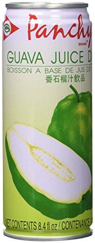 PANCHY Guaven Nektar, 15er Pack (15 x 250 ml Packung)