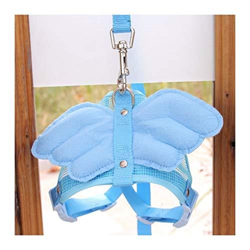 XIAOLANGTIAN Adorable Comfort Katze & Hund Haustier Sicherheit Walking Weste Harness Matching Blei Leine Angel Wings Kostüm, Blau, S