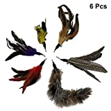 UEETEK 6pcs cat teaser refill cat teaser feather Replacement Cat Catcher Toy and Soft Furry Attachments For Cat Kitten Toy Wands