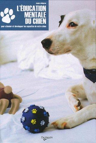 L'éducation mentale du chien : Offrez-lui plus d'activités