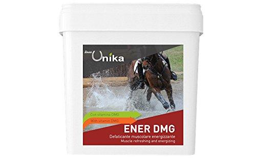 Feuchtigkeitsspendende Körper Gel (Unika Energy dunkelgrau 1kg Gel feuchtigkeitsspendend Muskeln Belebende für Pferde Sportler)