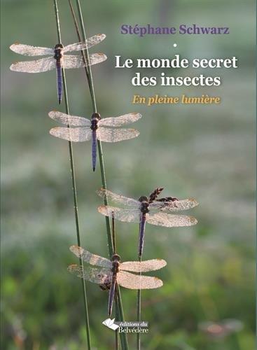 LE MONDE SECRET DES INSECTES