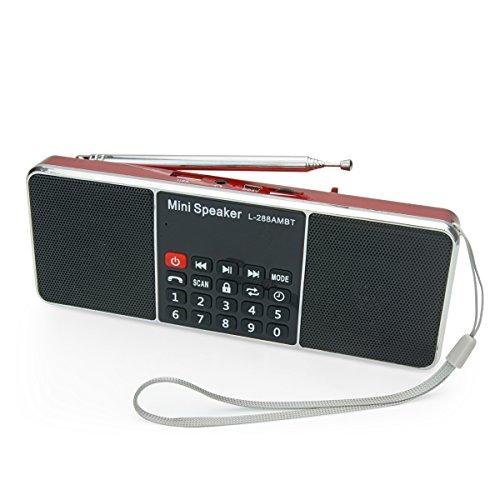 PRUNUS Portables AM FM Bluetooth Radio MP3 mit Doppelmagnet Lautsprechern – Stereo Sound – Automatische Sendereinrichtung- AUX und Sleep Timer Funktion - Unterstützung für Flash Drive/ Micro SD Card / TF Card (8GB, 16GB, 32GB, 64GB) für das Abspielen von MP3 Dateien.