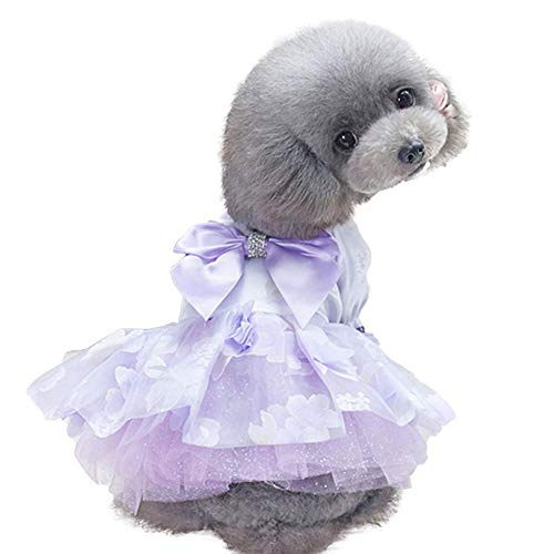 BLB Hund Rock Dünnschliff Frühling und Sommer Teddybär Xiong VIP Bomei Hund Katze Kostüm Rock Sommerkleidung Prinzessin Welpen (Color : Purple, Size : L) (Für Teddybär Hund Kostüm)
