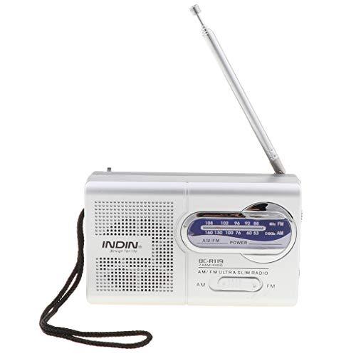 Shiwaki Tragbares Radio AM/FM Mini Pocket Reiseradio Lautsprecher Mit Antenne (Radio Fm Pocket Mit Am Lautsprecher)