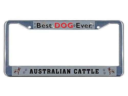 Price comparison product image Australian Cattle Dog Best Dog Ever Chrome Funny License Plate Frame Chrome Auto Car Tags Holder Gifts For Women, Men, Valentines Day Gifts