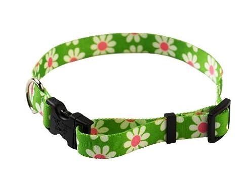 YellowDog Design Daisy Adjustable Collar, 3/8-inch,