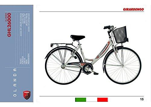 girardengo holland retro fahrrad e bike echt g nstig kaufen. Black Bedroom Furniture Sets. Home Design Ideas